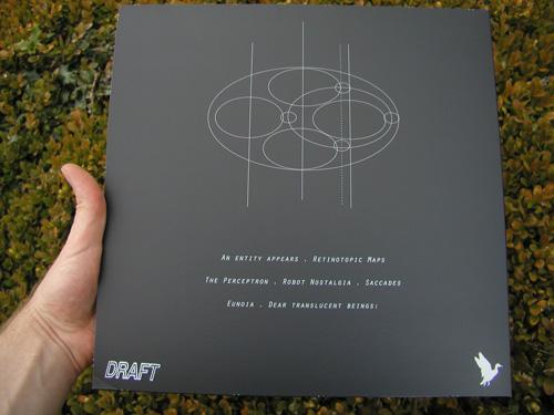 D012-back-bush.jpg